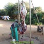 Afrika 201500278